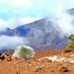 Free Admission at Haleakalā Marks Start of National Park Week
