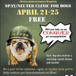 Free Dog Spay/Neuter M*A*S*H Clinic April 21 to 25
