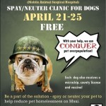Free Spay/Neuter Clinics Offered by Maui Humane Society