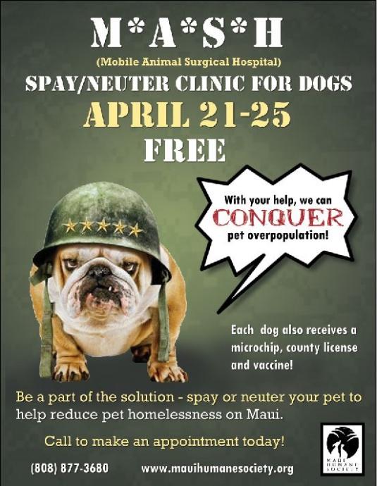 Maui Humane Society, Spay/Neuter Clinic flyer.