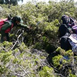 Haleakalā National Park Offers Teacher Training Program