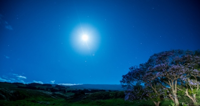 Maui Historical Society Moonlight Mele, April 20