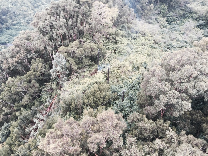 A large tree brought down electrical lines and damaged a pole on a ridge in Keanae cutting power to about 100 customers in Keanae and Nahiku.  The remote area is only accessible by helicopter and Maui Electric crews are currently on the scene.  However, due to the extent of the damage and location of the lines and pole, affected customers are asked to be prepared to be without power until tomorrow afternoon. Photo credit: Maui Electric.