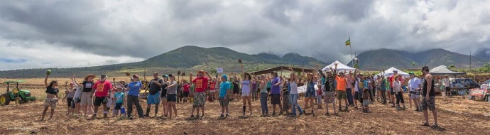 Maui Outgrow Monsanto Event, 5.23.15. Photo credit Darren McDaniel.
