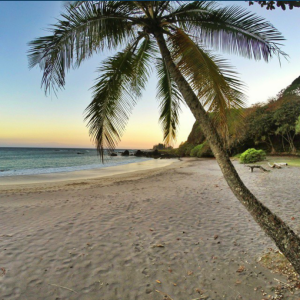 Hāmoa Beach. Photo credit: Kapena Kalama