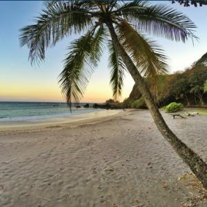 Hāmoa Beach. Photo credit: Kapena Kalama