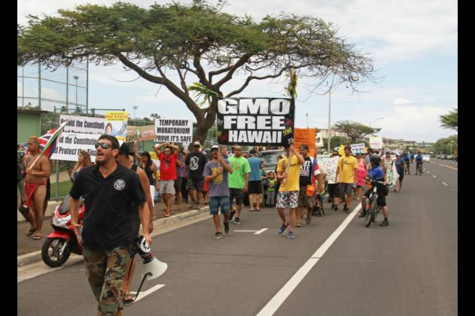 Anti-GMO rally. File photo credit: Rise Up Maui.