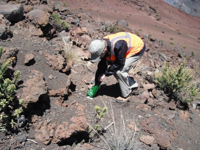 Trash pickup at the crater. Photo courtesy Haleakalā National Park.