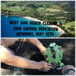 Surfrider Maui to Dedicate Rain Garden, Beach Cleanup