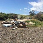 """Volunteer Cleanup Continues at """"River Mouth"""" June 13"""