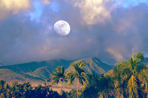 Moonrise over West Maui in summer. Courtesy photo, credit: Joanne West Photography.