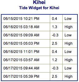 Screen Shot 2015-06-15 at 8.53.14 PM