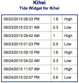 Screen Shot 2015-06-22 at 7.30.47 PM