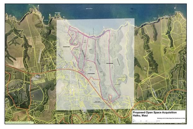 Map courtesy Council Vice-Chair Guzman's office.