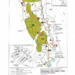 World Class Mountain Bike Trail System Opens on Maui