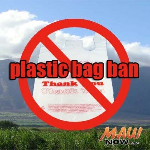 Plastic Bag Ban. Graphic by Wendy Osher.
