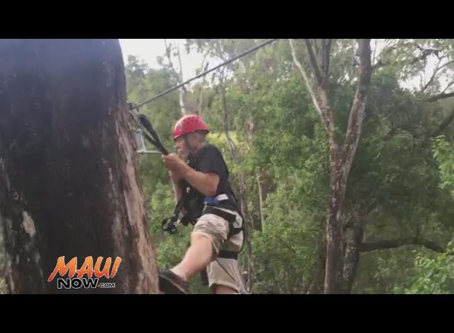 Where to Go Ziplining on Maui
