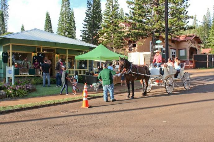 Photo, Carriage Rides on Lānaʻi. Credit: County of Maui.