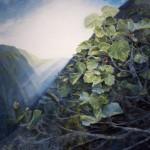 Mālama Wao Akua Exhibition Announces Call to Artists