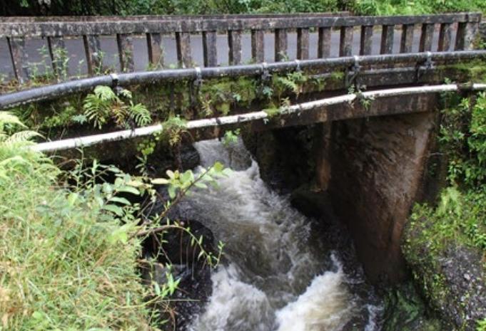 Palauhulu Stream Bridge. Photo credit: Hawaiʻi DOT, Highways Division.