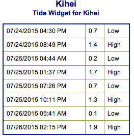 Screen Shot 2015-07-24 at 6.42.23 PM