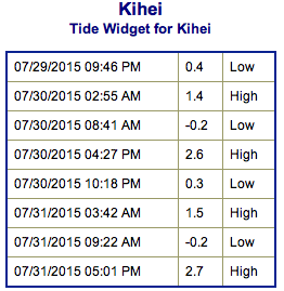 Screen Shot 2015-07-29 at 8.41.06 PM