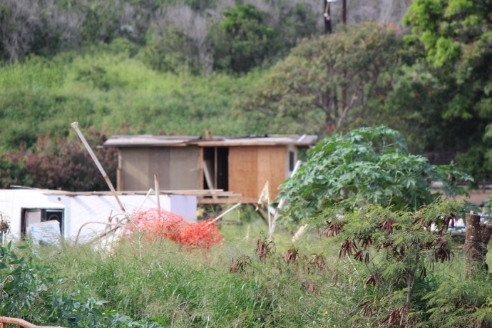 Maui Now file photo.