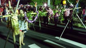 Kākoʻo Haleakalā demonstration, 8/19/15. Photo credit: Nicholas Garrett.