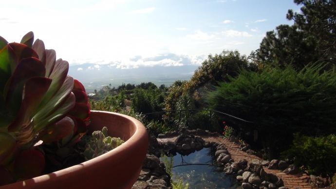 Kula Lodge garden view. Photo credit: Kiaora Bohlool.