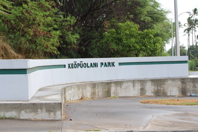 Keōpūolani Park, 8.6.15. Photo by Wendy Ohser.