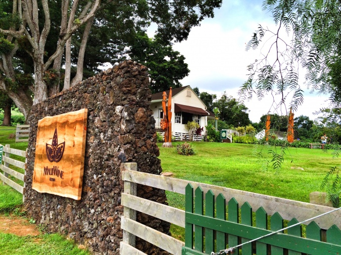 The rebranded MauiWine is located in Kula. Complementary photo