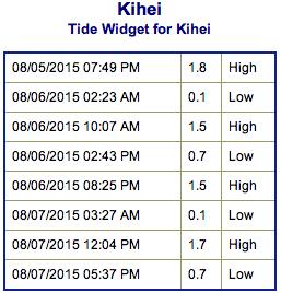 Screen Shot 2015-08-05 at 8.49.29 PM