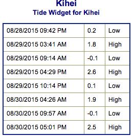 Screen Shot 2015-08-28 at 8.30.01 PM