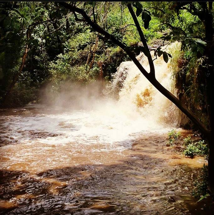 Honopou Stream in East Maui. Photo taken Saturday, 8/22/15. Credit: Regan Patao.