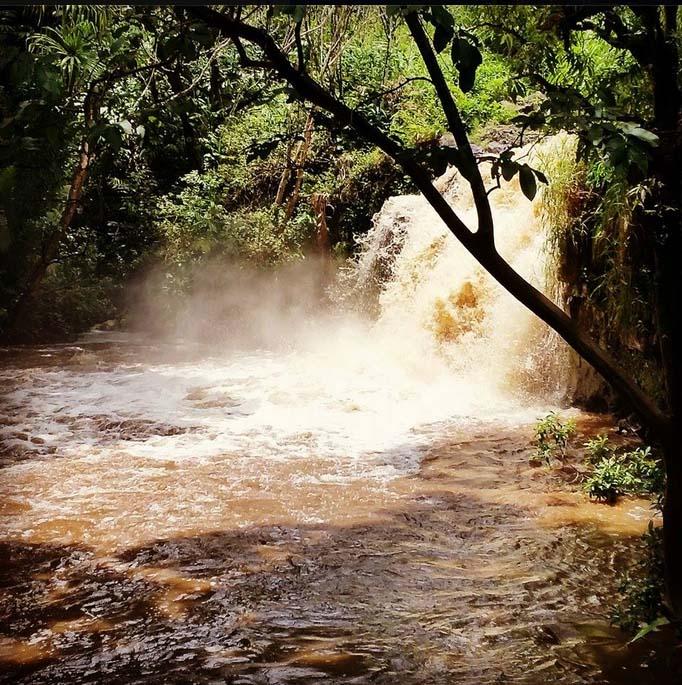 Honopou Stream in East Maui. Photo taken Saturday, 8/22/15. Credit: Regan Patao.