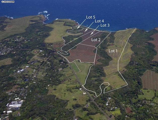 Photo: Hamakualoa coastal lands: lots 1,3,45 are proposed for purchase in County budget. Credit: RAM.
