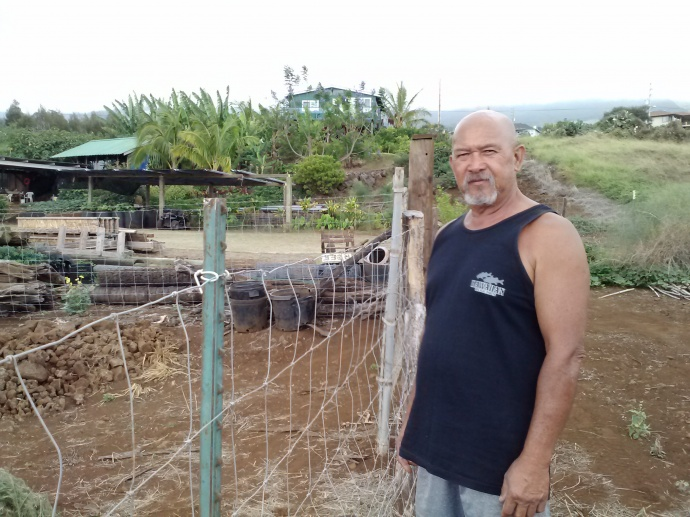 Cultural practitioner Norman Abihai, shown at his Waiohuli homestead, will demonstrate carving a poi-pounding board at Sunday's Keōkea Homestead Open Market.  Photo credit: Kekoa Enomoto.