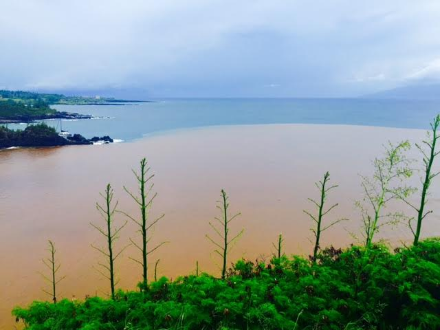 Brown Water Advisory Issued for Honolua Bay, Maui