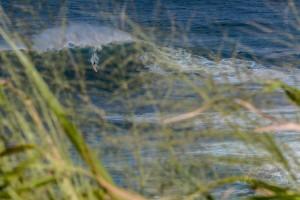 """Image: Tenessa Cavitt / October 28, 2015 / Peahi """"Jaws"""""""