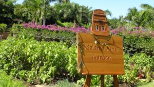 Newly-named garden at Four Seasons Resort Maui. Photo by Kiaora Bohlool.