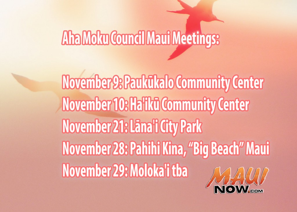 Maui Now graphics by Wendy Osher.