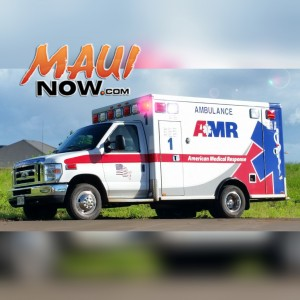 File photo by Wendy Osher. Maui Now graphics.