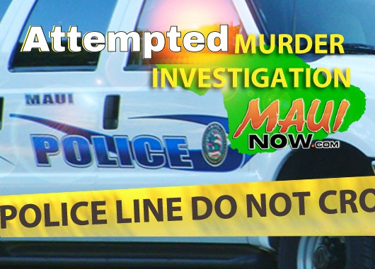 Attempted murder investigation. Maui Now graphic.