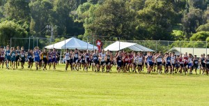 The start of the boys three-mile race Saturday at Seabury Hall. Photo by Rodney S. Yap.