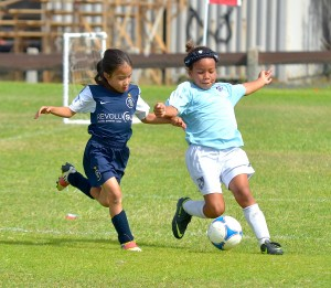 """National """"E"""" Coaching Course is being offered to allcompetitive soccer coaches U13 and above here on Maui, from Dec. 11-13, at Maui Waena Intermediate School in Kahului. File photo by Rodney S. Yap."""