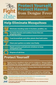 Fight The Bite Flyer: Help eliminate mosquitoes/protect yourself.