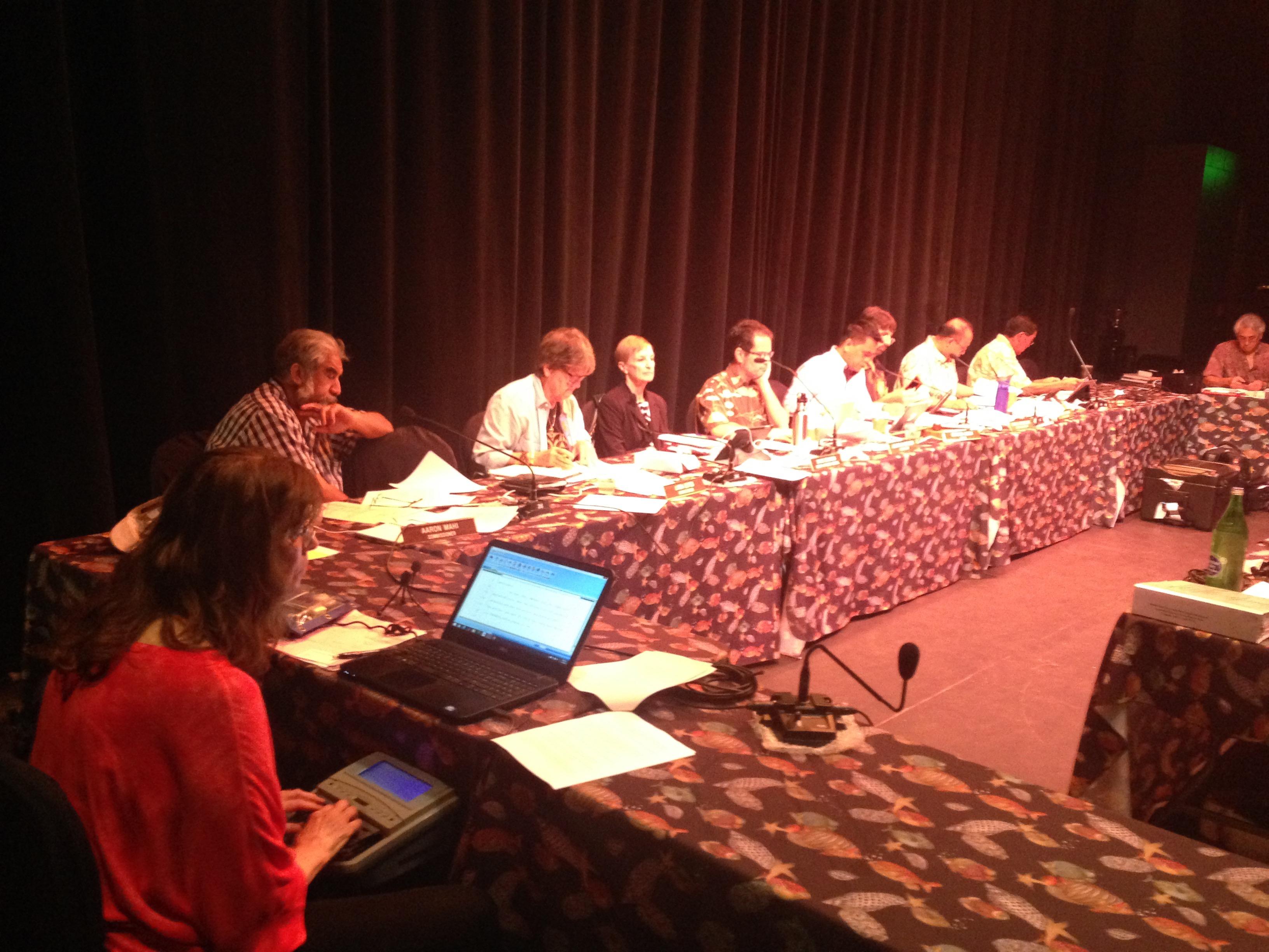 The state Land Use Committee hears Olowalu Town FEIS testimony. Debra Lordan photo.
