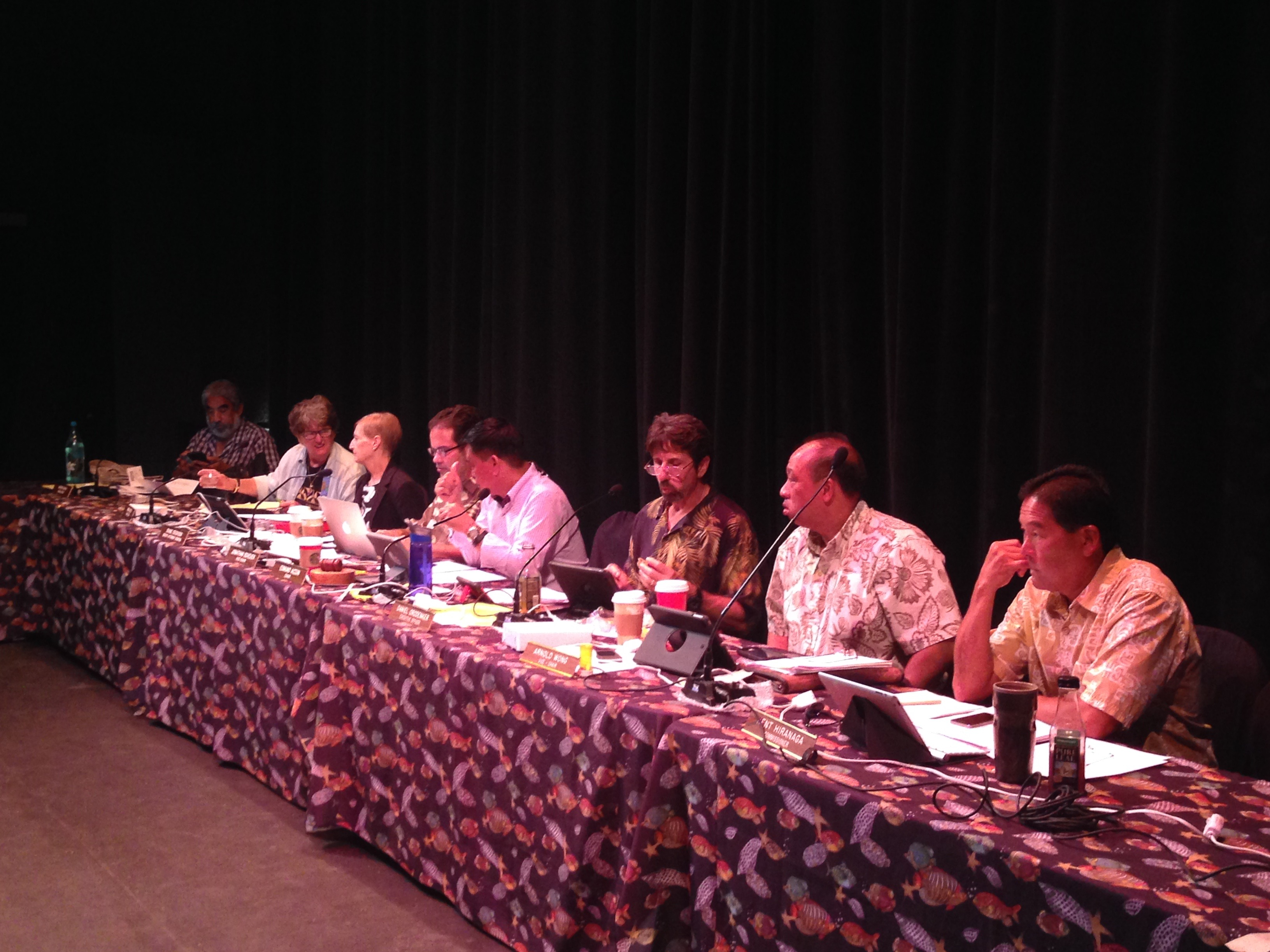 The state Land Use Committee listens to testimony. Debra Lordan photo.