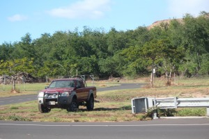 Olowalu undeveloped lands, Nov. 2015. Photo by Wendy Osher.