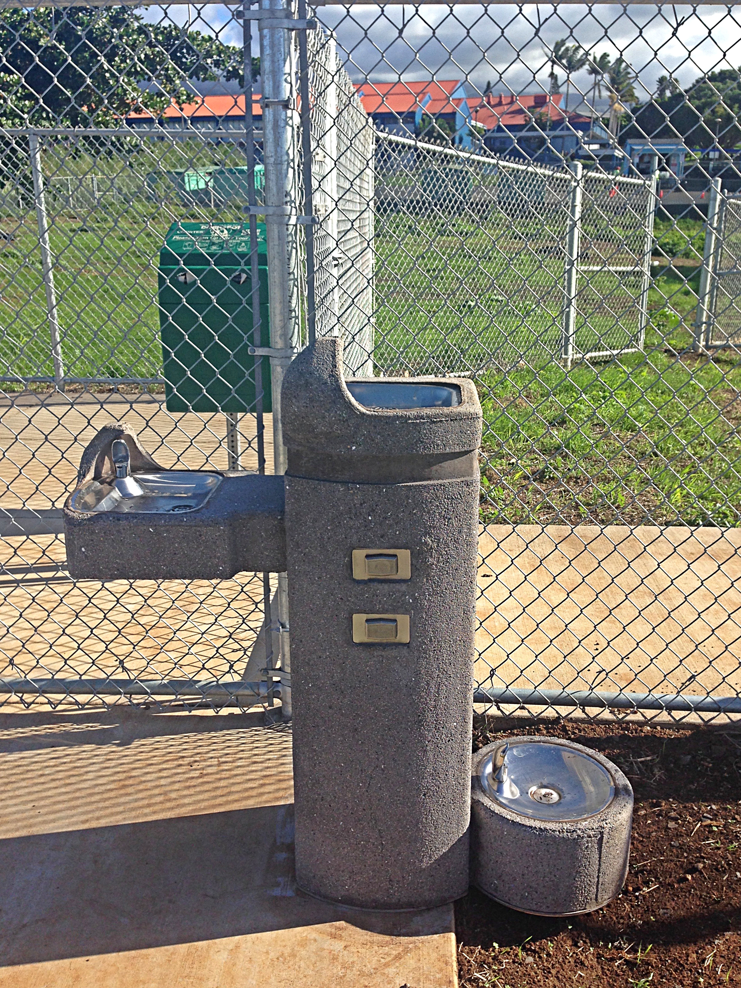Upcountry Dog Park water fountains for owners and dogs alike. Debra Lordan photo.